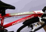 2017 volles der Legierungs-24 Fahrrad Geschwindigkeits-des BergBike/MTB