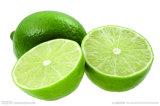 Het Poeder van de citroen