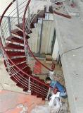 Escalera entera del arco moderno de la estructura de acero de la manera de la alta calidad