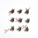 Locket Pendant Necklace Jewellry (FC)를 위한 분류된 Dog Floating Charms