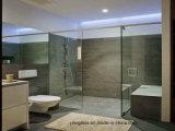 高品質のオーストラリアの証明書が付いている緩和されたシャワー・カーテンガラス