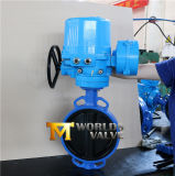 Motor Actuator Rubber Lined Butterfly Valve mit Worm Gear (CBF02-TA01)
