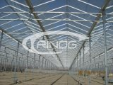 Estufa de vidro agricultural de Multispan (XS-GL9600/12000Venlo)