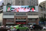 Cartelera al aire libre de la visualización electrónica/LED del RGB de la alta definición P5 para hacer publicidad, deportes