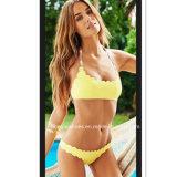 Señora atractiva Bikini Swimwear del cuello del halter