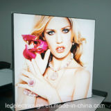 Алюминиевое Frame СИД Sign для Shop Front Name Advertizing Aluminum СИД Light Box Display