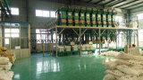 Industria del cemento usar la banda transportadora resistente química
