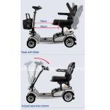 """""""trotinette"""" Handicapped incapacitado """"trotinette"""" do """"trotinette"""" de Trike do passageiro com táxi"""