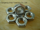 Edelstahl/Carbon Steel Hex Bolts u. Nuts Zinc Plated Hot Galvanized Hex Nut und Bolt (DIN933 AND DIN934)