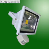 80W COB LED Flood Light