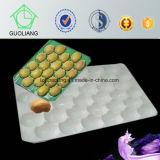 Подносы плодоовощ Guoliang PP ранга цены промотирования высокие пластичные для свежий упаковывать кивиа