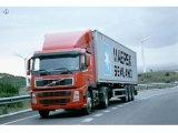 効率的な海の貨物出荷/信頼できる海貨物転送/船便