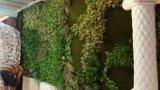 Заводы высокого качества искусственние и цветки зеленой стены