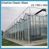 vetro/costruzione della glassa colorato 3-19mm di vetro