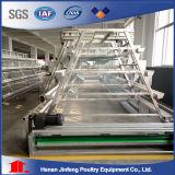 Uitstekende kwaliteit een Systeem van de Kooi van de Kip van het Type Automatisch van Jinfeng