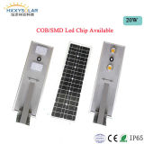 Outdoor IP65 Solar LED Light 6W-100W Integrated Solar Street Light /Solar Garden Lamp with Lithium Battery