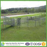 Panneaux lourds bon marché de bétail d'approvisionnement de la Chine à vendre