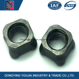 Fasterner Manufacture Stainless Steel Weld Nut