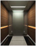 Fornitore domestico residenziale dell'elevatore del passeggero