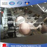 Systeem van de Inzameling van het Ei van China het Professionele met het Lagere Tarief van Brokening van het Ei