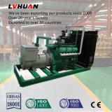 Elektrische Generator van de Korrel van de Macht van de biomassa de Houten