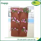 Piantatrice variopinta del giardino della parete del feltro di verticale di disegno unico di Onlylife