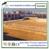 Valla barato flexible de carreras de caballos