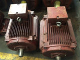 Y Series Cast Iron Three-Phase Induction Motor con CE