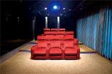 Muebles de cuero del sofá de Italia del ocio (845)