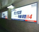 Estação que anuncia a caixa leve magro do painel do guia