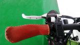 산악 자전거 큰 힘 뚱뚱한 타이어 바닷가 함 전기 자전거