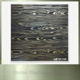 Plaque enduite repérée gravée en relief décorative d'acier inoxydable de couleur