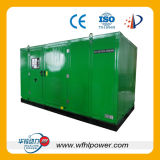 Generator des Gas-800kw