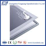 銀製カラープロフィールフレーム磁気LEDの軽いボックスSDB20