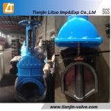 Soupape à vanne Non-En hausse posée par caoutchouc d'écluse de cheminée de Tianjin