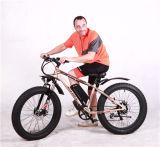 Bici grassa elettrica della bici grassa