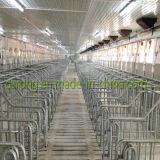 Lange Zeit-verwendete Schwein-landwirtschaftliche Maschine-Feder