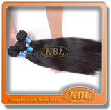 Volles Häutchen-brasilianische Haar-Welle (KBL-BH)