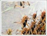 زراعة شبكة مضادّة أرقة تشبيك ([م-ين-8])