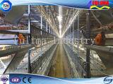 Bajo costo prefabricada pollo Poultry Farm Shed / gallineros (FLM-F-015)