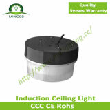 Bestes Quality 40W~50W Induction Ceiling Light Made durch ein ISO9001 Factory Click zu See More Items