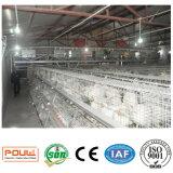 Equipamento de sistema automático da gaiola da galinha de grelha da bateria da exploração agrícola