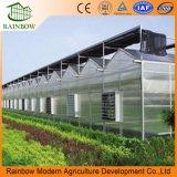 Mordenの農業の成長のためのパソコンシートの温室