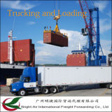 A carga barata do mar/oceano das taxas LCL FCL do serviço global do transitário navio o frete de China a ultramarino (Médio Oriente)