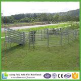 El ganado artesona, resistente, 6 carriles, 69 x 42 carril oval, 50 x 50 postes