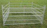 半分の網の畜舎の塀が付いているパネルを囲っている電流を通されたヒツジ