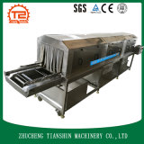 自動洗濯機の皿およびバスケットの洗濯機Tsxk-60