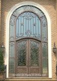 アークの側光が付いている上の錬鉄の前ドアおよび別荘のためのトランサム