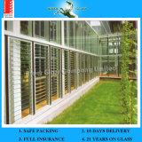 4-12 mm CE et verre à lunette ISO9001 et verre Louvre