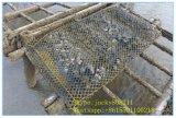 굴 증가를 위한 굴 부대 또는 감금소